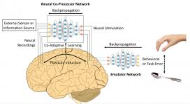 Neural co-processor for the brain