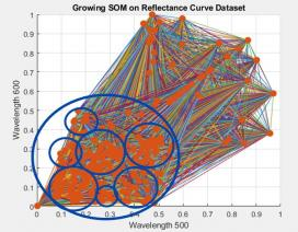 A growing self-organizing map of silicon nanostructure dataset